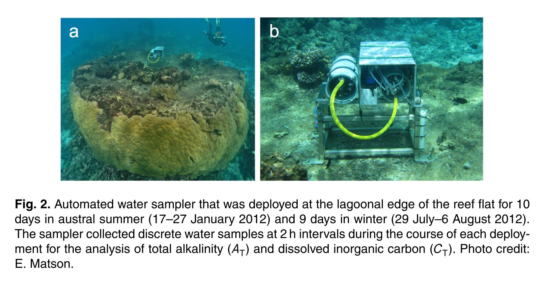 Coral Reefs Suffering from Ocean Acidification