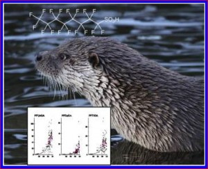 European Otter (Lutra lutra) and trends of some perfluorinated compounds (PFCs).