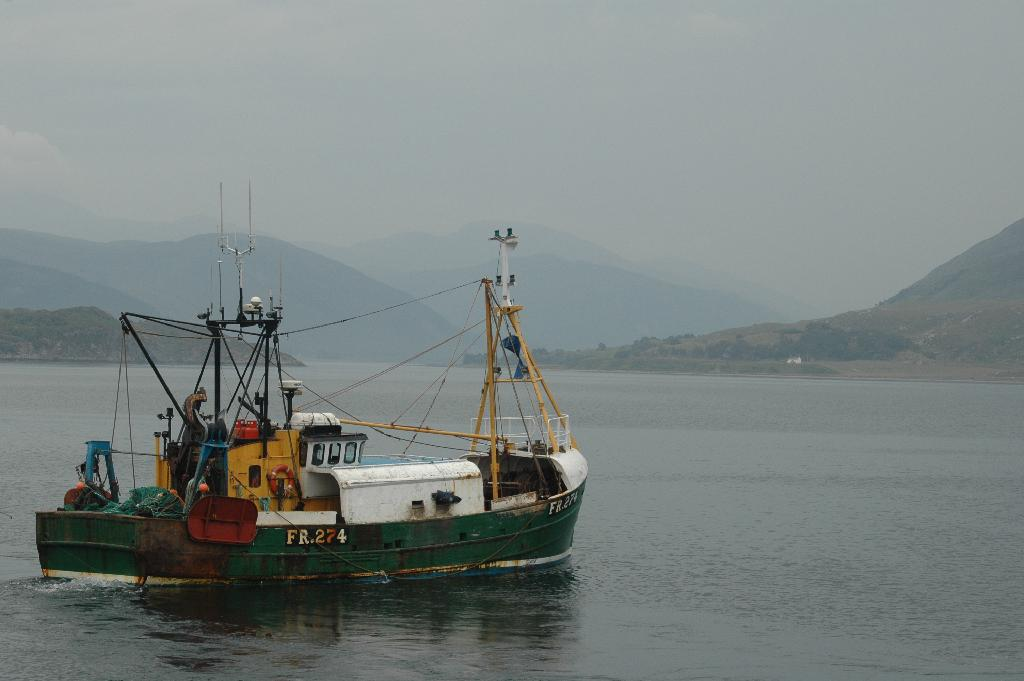 Cooked fish: Ocean warming and global fisheries