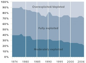 Figure 1: The use intensity of commercially relevant fish stocks has increased significantly worldwide. © maribus (after Quaas, FAO Fishstat)