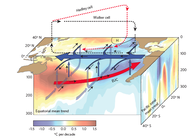 Figure 2.  Color shading represents temperature change from 1992 to 2011, representing a transition into the most recent warming hiatus.  Increased Ekman divergence at the equator and surface ocean cooling can be seen in the Eastern tropical Pacific.  Heat transfer to the ocean's interior can also be seen in the Western and Central tropical Pacific.
