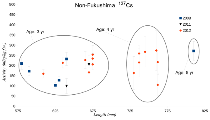 "Figure 3: Non-Fukushima 137Cs (""Activity"" on y-axis) were similar between both fish exposed to Fukushima-derived radiation (years 2011 and 2012, especially age 4 fish) and unexposed fish (2008)."
