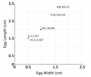 Figure 3: Egg growth over time.