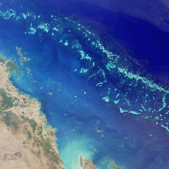 Figure 1. Satellite image of the Great Barrier Reef off of Queensland (retrieved from Wikipedia, photo by NASA).