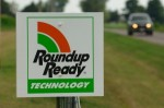 """""""Roundup Ready technology"""" is a form of herbicide-resistant crop developed by Monsanto (MonsantoBlog.com)"""