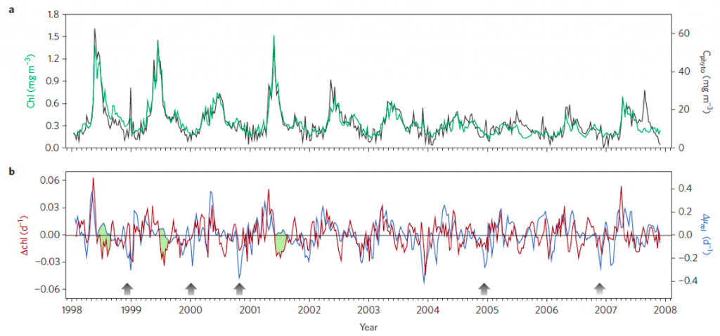Figure 4. a. Phytoplankton chlorophyll (green line) and carbon concentrations (black line) in the subarctic Atlantic Ocean (box #2 in Figure 2a). b. rate of change in chlorophyll concentration (red line) and phytoplankton division rate (blue line). Black arrows show winter disturbance periods and green shaded regions are summer periods following a notable phytoplankton bloom.