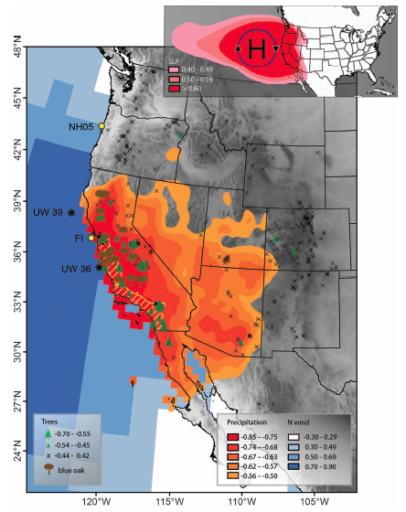 Figure 1.  Top: High sea level pressure system responsible for upwelling favorable, alongshore North winds.  Bottom: Shaded blue regions indicates correlation with the upwelling favorable North wind direction.  Orange shading onshore indicates precipitation.  Tree chronologies are reported as to how well they agree with Blue Oak chronologies.