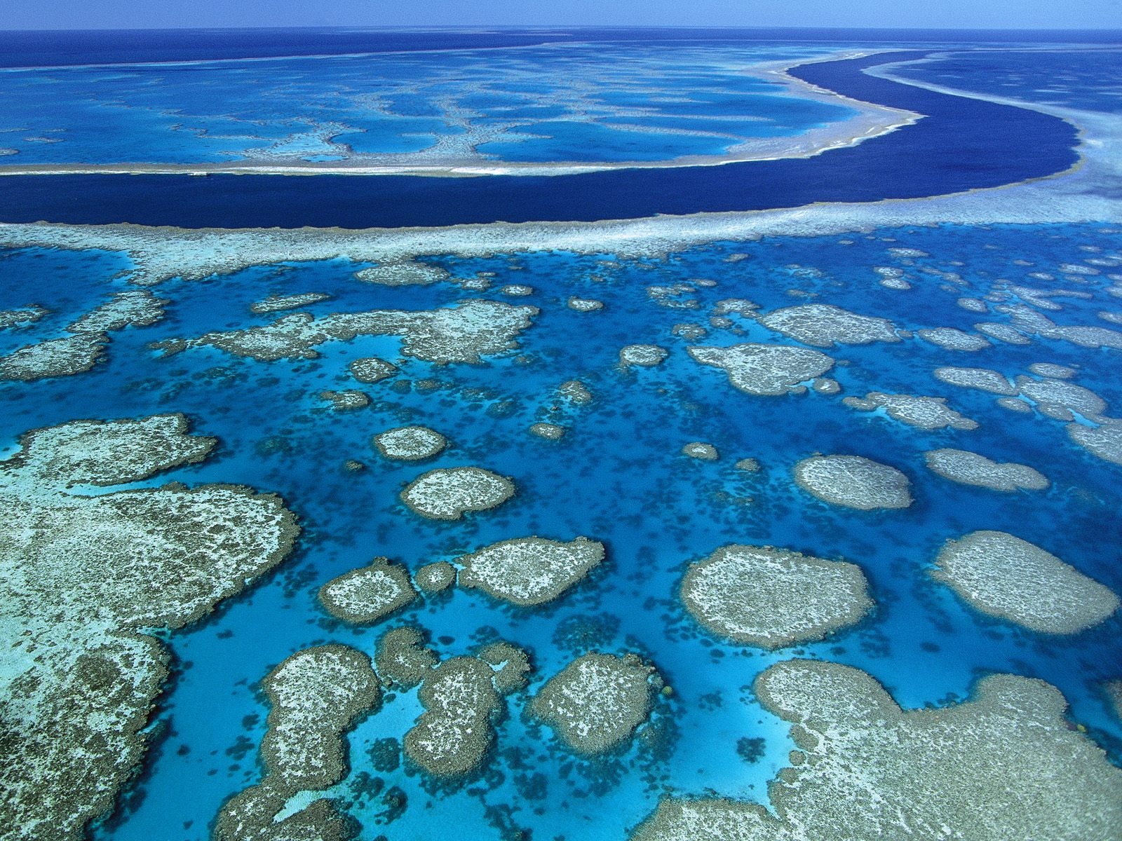 Image of the Great Barrier Reef.