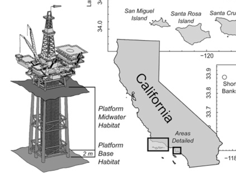 New housing options in unlikely places:  Animals and oil platforms.