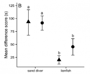 Fig. 3 Risking life for love. When presented with a predator and a female, male damselfish hide much more when the predator is a sand diver than when it is a lionfish. Triangles again indicate small predators and circles large ones.