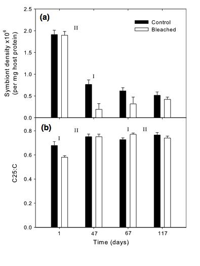 a) Symbiont density and b) C25:C ratio on monitor days 1, 47, 67, and 117 for the anemones under control (black bars) and bleached (white bars) treatments. 'I' signifies significant differences between control and bleached anemones treatments, while 'II' indicates significant differences between days (p < 0.05).
