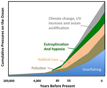 Global change and the future ocean
