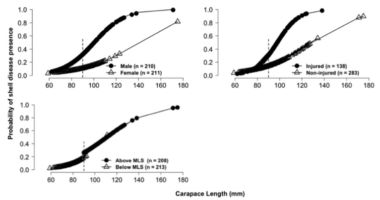 Figure 3 - Probability that lobsters were diseased, broken down by factor (sex, size, and injury)