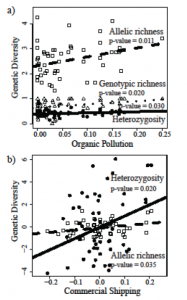 Figure 2. Plots of significant correlations between genetic diversity metrics (heterozygosity and allelic richness) and a) organic pollution (based on pesticides) and b) commercial shipping.