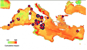 Figure 3: Impact map showing the cumulative impact. The cumulative impacts are represented as red dots and genetic diversity as blue dots. Dot sizes are proportional to the level of diversity and cumulative impact and striped dots indicate that diversity and impact were of the same category level.