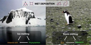 Figure 2. Snow melting may be the major input of volatile methyl siloxanes to the Antarctic ecosystem.