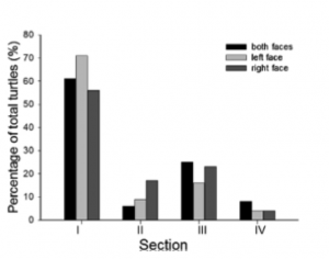 Figure 5: Percentage of turtles spotted at four surveyed sections.  Black: both faces, light grey: left face, dark grey: right face.  From Su et al., 2015.