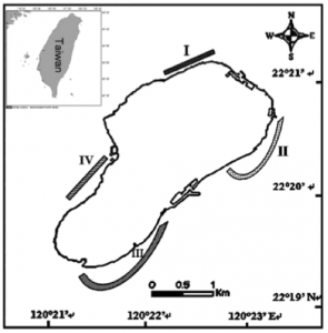 Figure 3: Map of study sections: I: Beauty Cave to Vase stone, II: Jun-Au Beach to Taipower Company, III: Hai Mouth to Daliao Fishing Port, IV: Shan-fu Fishing Port to Clam Bay.