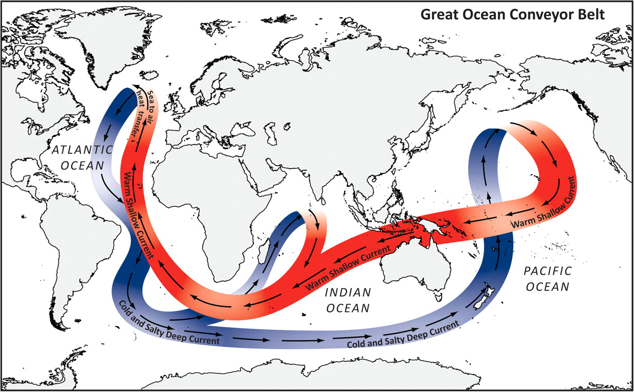 Figure 1. Global thermohaline circulation (or ocean conveyor belt) helps to redistribute temperature and compositional properties throughout the global ocean.