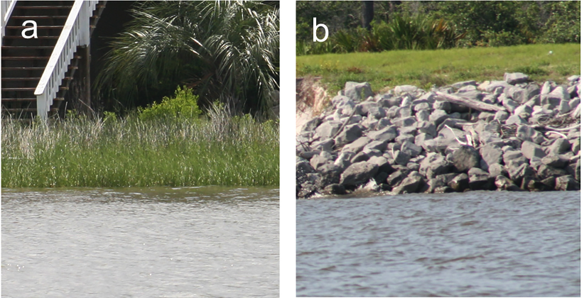 Do fish communities need natural shorelines, or are artificial structures ok?