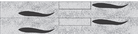 Figure 1 – A still shot from MultiParticle Collision Dynamics tracking many small particles of water around swimming fish.
