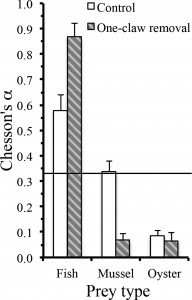 FIGURE 3. Chesson's α (mean + SE) of each prey type for control stone crabs (n = 9) and stone crabs with one claw removed (n = 4) in experiment II. The horizontal line indicates α with equal consumption of all prey types.