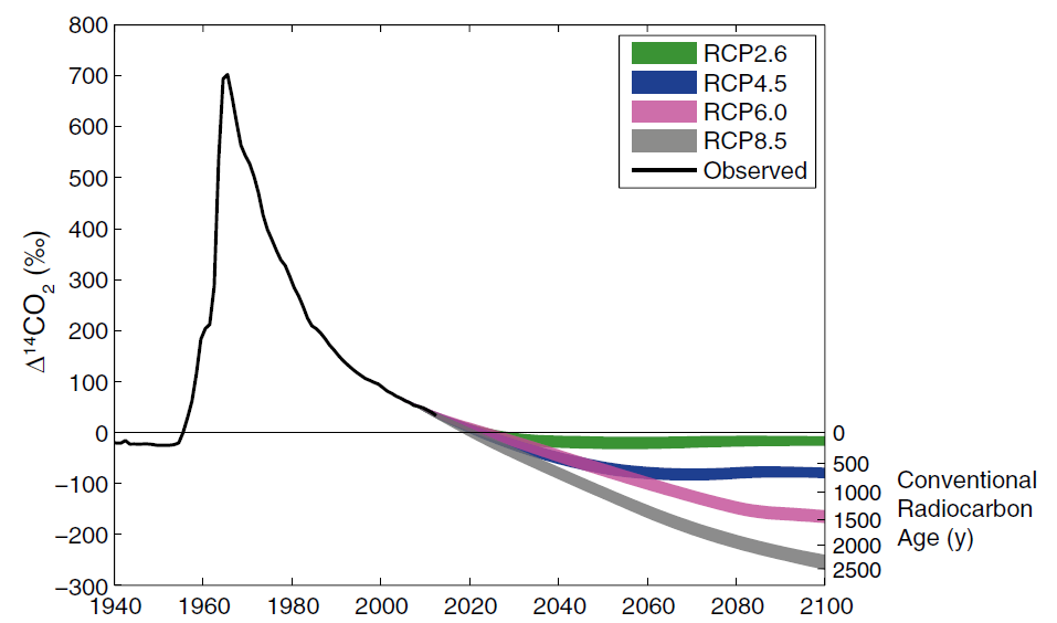 """Historical and projected radiocarbon content of the atmosphere. 14C spiked around 1960 due to nuclear weapons testing, and has been drifting back toward the baseline as the excess 14C works its way into the ocean, plants, and soils. The trajectory of radiocarbon content for the rest of the century depends on fossil fuel emission scenarios (Representative Concentration Pathways; RCPs). With aggressive action to limit CO2 emissions, atmospheric radiocarbon will only """"age"""" by a hundred years or so (green line) but under """"business as usual"""" policy, it will be appear over 2000 years old by 2100 (grey line), severely limiting the dating of younger materials. From Graves 2015."""