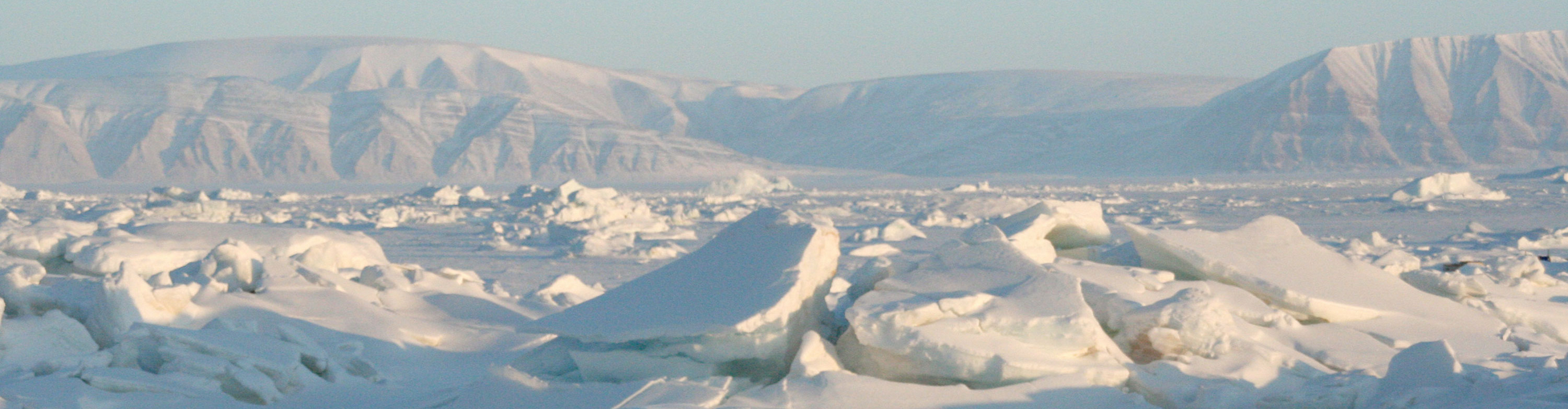 How thick is polar ice?