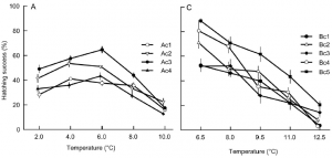 Figure 4 – Father x Temperature interaction in western Atlantic cod (A) and Baltic cod (C): The graphs are from Figure 1 of Dahlke et al. 2016. Each line represents the survival rate of offspring from a particular father. Survival of western Atlantic cod (left) increases to the optimum 6 oC, then decreases at temperatures above 6 oC. The Baltic cod experiment (right) begins with 6 oC and survival declines as temperatures increase above 6 oC. The criss-crossing lines in this figure demonstrate how offspring produced by different fathers respond differently to increasing temperatures.