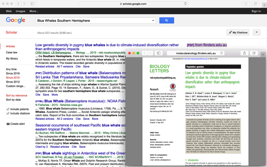 Figure 1: Google Scholar (https://scholar.google.com). A useful site to explore peer reviewed journal articles related to ocean topics, like blue whales in the southern hemisphere.