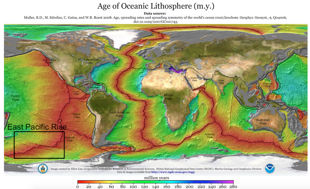 Figure 2 – Map of seafloor spreading areas and where hydrothermal vents are most common (red areas, where the seafloor is youngest). The study area, the East Pacific Rise, is highlighted in the black box. (Source: Wikimedia Commons)