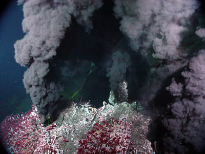Stop: Recovery Time!: Using volcanoes to model recovery of deep-sea communities