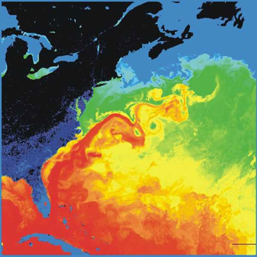 The Atlantic Ocean is the Culprit in the Case of the Cooling Eastern Pacific
