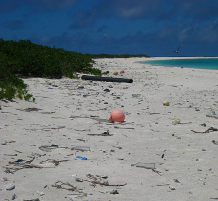 Fig 1: Marine debris on the beach at Green Island in the Northwestern Hawaiian Islands. Author: Keeley Belva, NOAA. Source: https://commons.wikimedia.org/wiki/File:Kure_debris_440.jpg