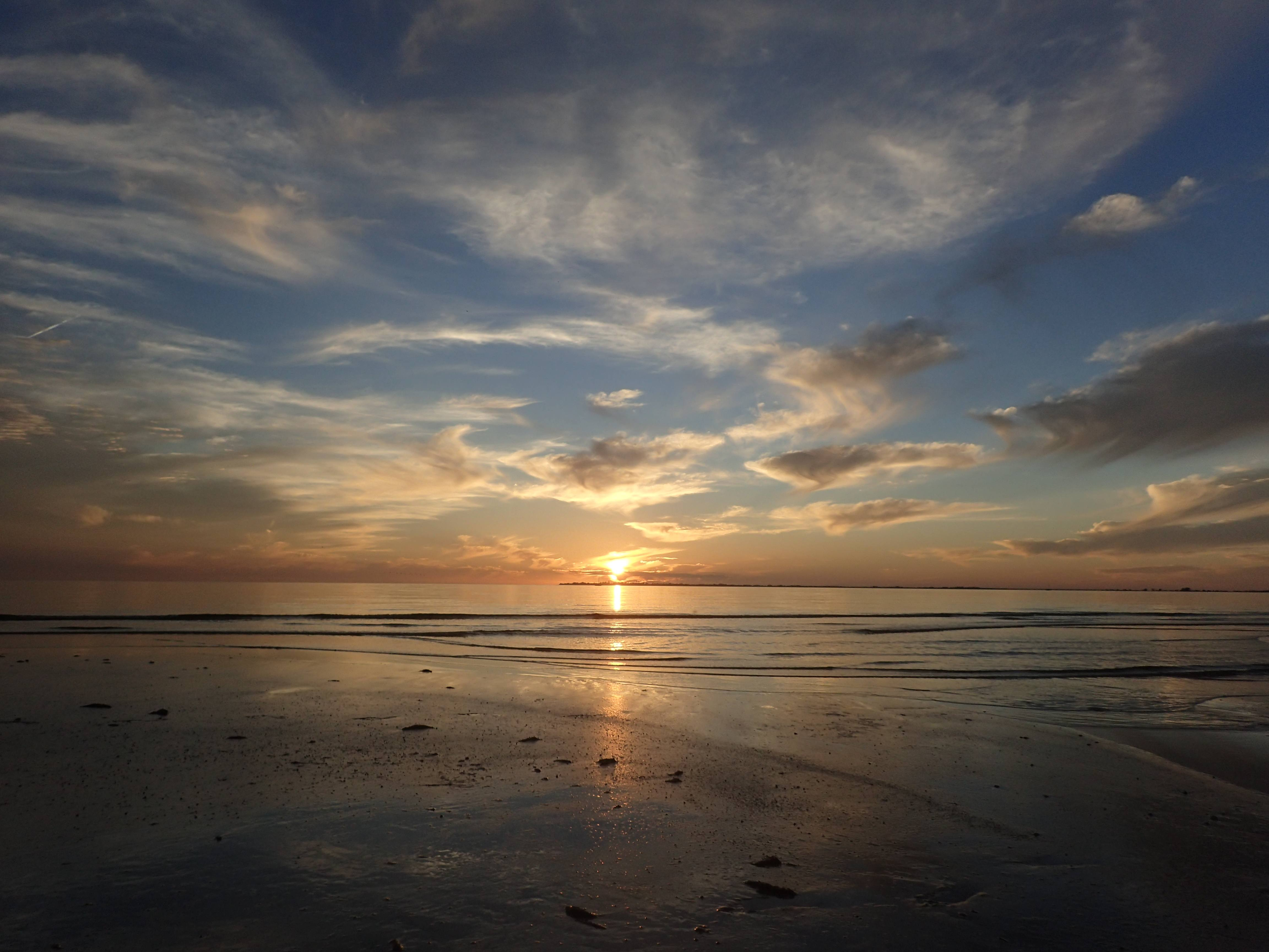 Giving Thanks for the Ocean: The gratitude of the writers