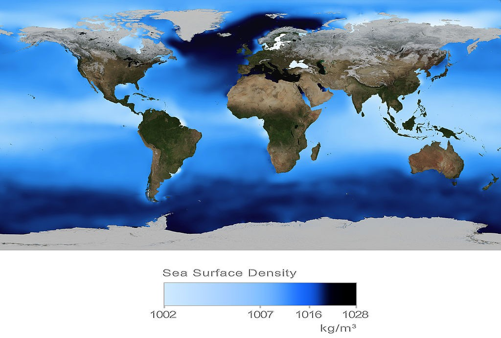 Global sea surface density. You can see that very dense water has been transported to the North Atlantic, where it will cool and sink to become NADW and continue along the current conveyor belt. Credit: Wikicommons, NASA