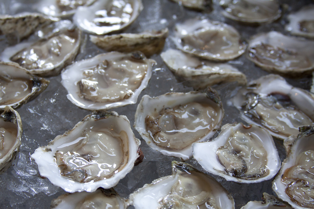 Oysters going viral