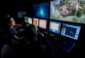 Scientists sit in the control van, watching a dive as Hercules zooms in on a octopus (large right hand screen). The Argus view of Hercules allows scientists (large left hand screen) to keep an eye on the ROV during the dive. Photograph by Julye Newlin.
