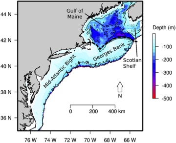 A map of the US northeast coastal shelf—the area I will be modeling—highlighting the differences in how far off the coast and how deep the coastal shelf is from end to end. Source: Kleisner et al., 2016