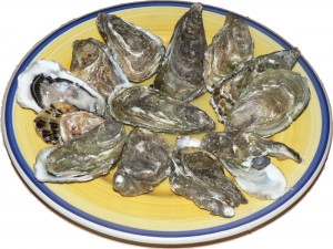 Figure 1: One way to contract the human norovirus is by consuming raw oysters that have been exposed to raw sewage, often caused by overflow events after large storms. Credit: Wikimedia https://upload.wikimedia.org/wikipedia/commons/3/37/Oysters_p1040741.jpg