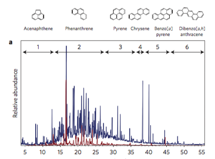 Caption: The graph above shows signals (peaks) produced when PAHs are related compounds are detected using a gas-chromatograph/mass spectrometer (GC/MS). The red line shows the peaks found when researchers only looked for 64 known PAHs, and the blue line also includes all of the related compounds in the sample that the researchers didn't specifically target. Source: Gonzalez-Gaya et al., Nature Geoscience 2016.