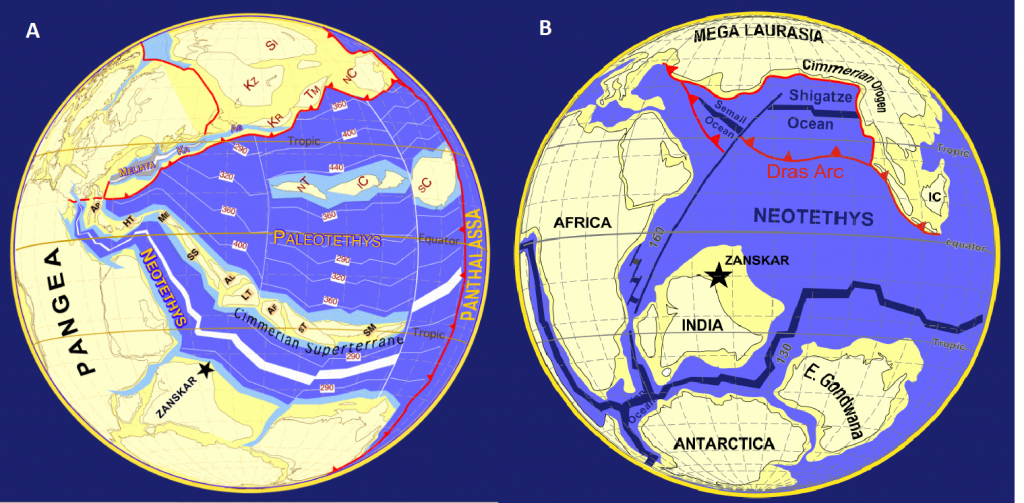 Figure 1(a): Plate tectonic reconstruction of the Tethys realm at 249 Ma. A rift forms off the north coast of South Pangea (Gondwana) and piece of continental shelf (Cimmera) moves north, pushing up the Paleo-Tethys ocean and creating the Neo-Tethys. (b) Plate tectonic reconstruction of the Tethys realm at 100 Ma. The Neo-Tethys is present where the Paleo-Tethys once was, and Gondwana has started to break apart into recognizable continents.