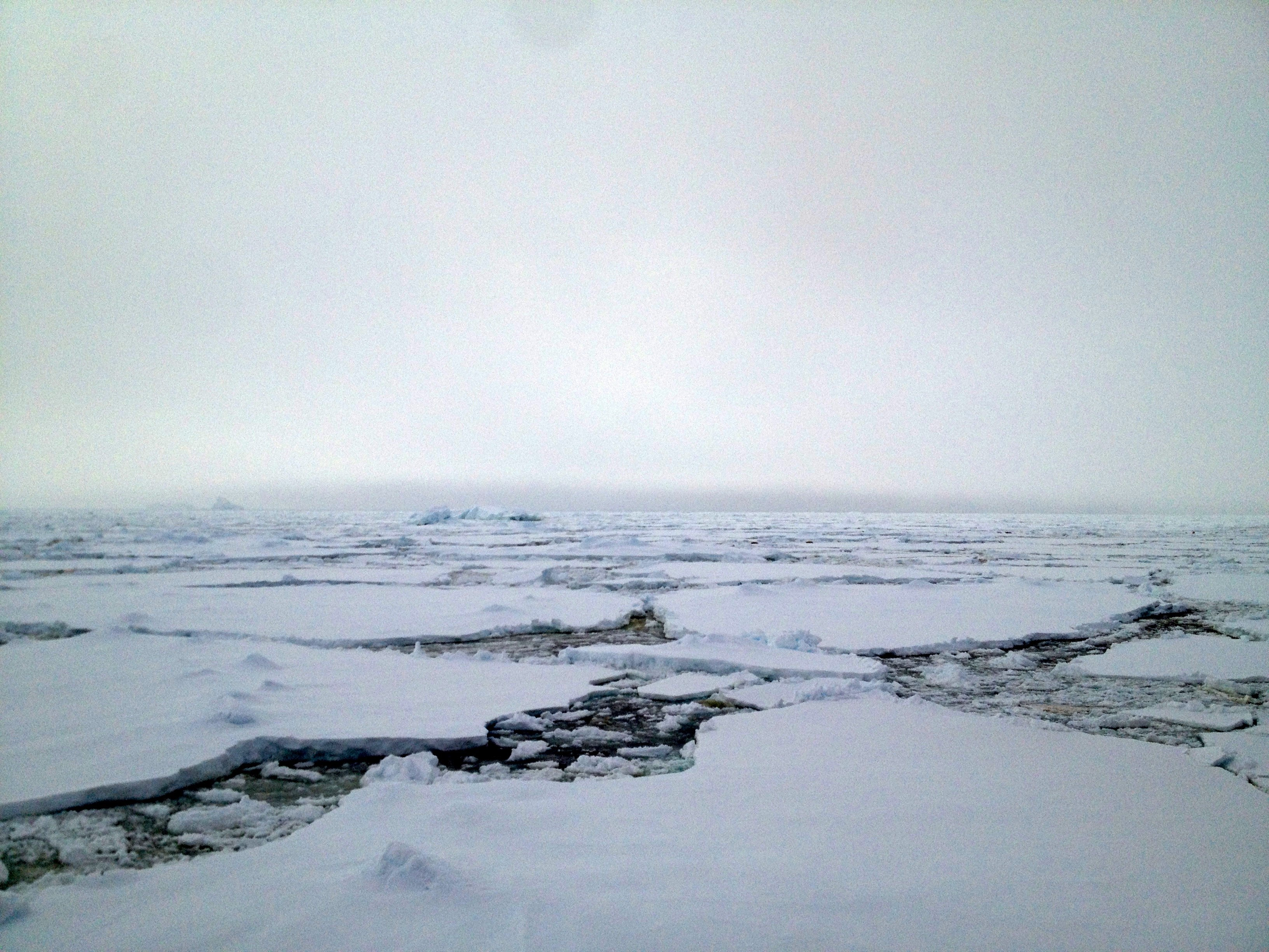 The Antarctic Peninsula is cooling… for now