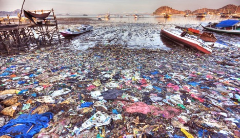 Germ Stowaways: How Plastic Waste Has Become an Environment for Harmful Bacteria
