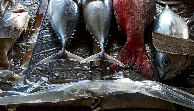 Why do restaurants join sustainable seafood labelling programs?