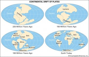 The Earth's crust is divided by tectonic plates, which are always drifting moving. In the last 200 million years. Gondwana was formed when the supercontinent Pangaea spilt in two. [Encyclopedia Britannica]