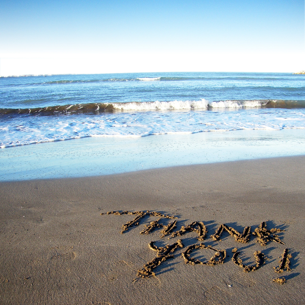 7 Reasons to Give Thanks For Our Ocean