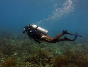 Fig. 9. Rebecca Flynn scubadiving in the BVI. Photo Credit: Dave Gleeson. Do not use without permission.
