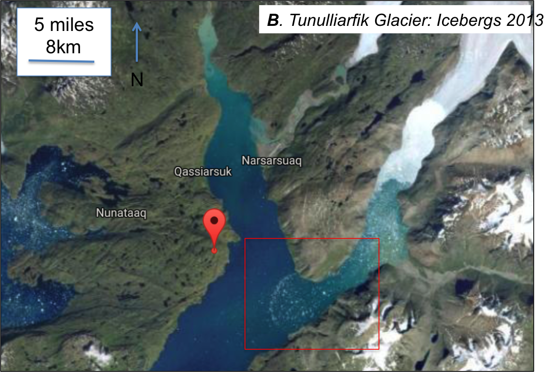 Tunulliarfik fjord, iceberg sample collection area within the red box, the red balloon is placed at 61.1N, 45.4W; image modified from Google maps