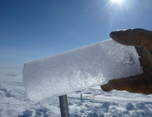 A Greenland ice core segment, extracted from the ice sheet. Ice cores trap past climate conditions, allowing researchers to study paleoclimates. Credit: wikicommons.
